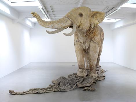 Ombre blanche, 2009, Vue de l'exposition «Caverne 2009», kamel mennour, Paris, 2009 © ADAGP Huan Yong Ping Photo : Marc Domage