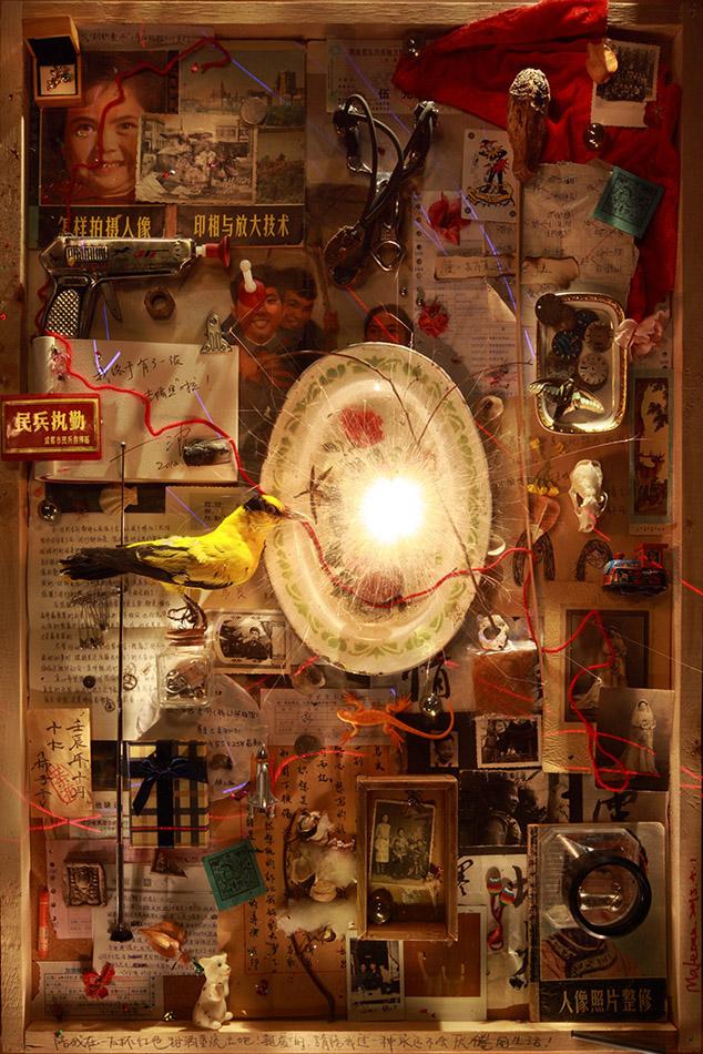 Série The Specimen of my Time, No°2, 2012, 120X80